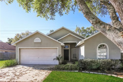 Photo of 1205 Lake Shore Ranch Drive, SEFFNER, FL 33584 (MLS # O5768160)