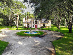 Photo of 3530 Acre Court, LAKE MARY, FL 32746 (MLS # O5776039)