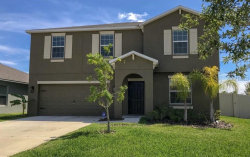 Photo of 10312 Boggy Moss Drive, RIVERVIEW, FL 33578 (MLS # O5778655)