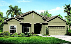 Photo of 3837 San Isidro Circle, SAINT CLOUD, FL 34772 (MLS # O5778981)