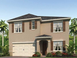 Photo of 2448 White Poppy Drive, KISSIMMEE, FL 34747 (MLS # O5779027)