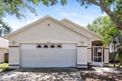 Photo of 10915 Brucehaven Drive, RIVERVIEW, FL 33578 (MLS # O5779584)