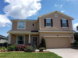 Photo of 11634 Balintore Drive, RIVERVIEW, FL 33579 (MLS # O5785541)