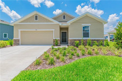 Photo of 3012 Satilla Loop, ODESSA, FL 33556 (MLS # O5785806)