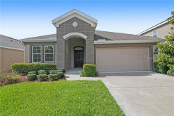 Photo of 21512 Southern Charm Drive, LAND O LAKES, FL 34637 (MLS # O5793386)