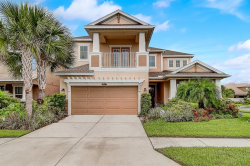 Photo of 8847 Sentiero Drive, LAND O LAKES, FL 34637 (MLS # O5793564)