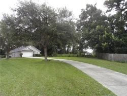 Photo of 1044 Sheeler Hills Drive, APOPKA, FL 32703 (MLS # O5802499)