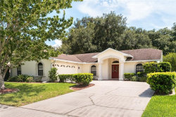 Photo of 142 Rachel Lin Lane, SAINT CLOUD, FL 34771 (MLS # O5806332)
