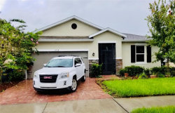 Photo of 11514 Luckygem Drive, RIVERVIEW, FL 33579 (MLS # O5806523)