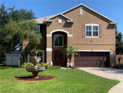 Photo of 817 Kamchatka Court, Unit 1, APOPKA, FL 32712 (MLS # O5806851)