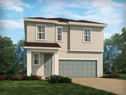 Photo of 11861 Brighton Knoll Loop, RIVERVIEW, FL 33579 (MLS # O5806910)