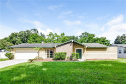 Photo of 18305 Dolly Brook Lane, LUTZ, FL 33549 (MLS # O5811336)