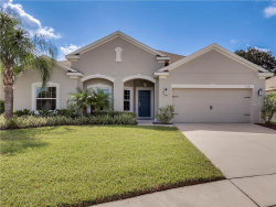 Photo of 5271 Pine Lily Circle, WINTER PARK, FL 32792 (MLS # O5812546)