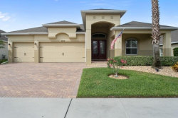 Photo of 2054 Sandy Garden Lane, WINTER GARDEN, FL 34787 (MLS # O5816315)