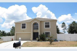 Photo of 2844 Magnolia Blossom Circle, CLERMONT, FL 34711 (MLS # O5818607)