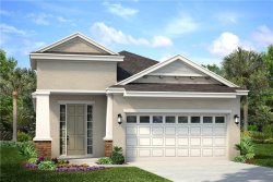 Photo of 6228 Sea Amber Lane, APOLLO BEACH, FL 33572 (MLS # O5825119)