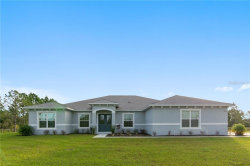 Photo of 3815 Caesar Avenue, ORLANDO, FL 32833 (MLS # O5825326)