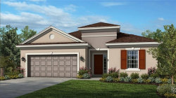 Photo of 1009 Timberview Road, CLERMONT, FL 34715 (MLS # O5826572)