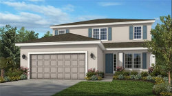 Photo of 1021 Timberview Road, CLERMONT, FL 34715 (MLS # O5826576)