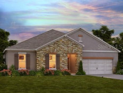 Photo of 4815 Butler National Drive, WESLEY CHAPEL, FL 33543 (MLS # O5837635)