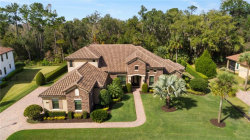 Photo of 2274 Soaring Eagle Place, LAKE MARY, FL 32746 (MLS # O5842244)