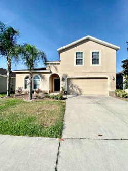 Photo of 10810 Cabbage Tree Loop, ORLANDO, FL 32825 (MLS # O5844729)