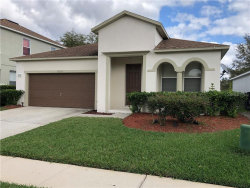 Photo of 13155 Oulton Circle, ORLANDO, FL 32832 (MLS # O5845281)
