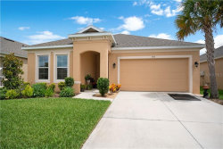 Photo of 973 Hilltop Park Court, APOPKA, FL 32703 (MLS # O5845607)