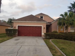 Photo of 2005 Highview Fall Place, BRANDON, FL 33510 (MLS # O5851064)