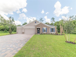 Photo of 17828 Tidewater Bay Lane, LUTZ, FL 33549 (MLS # O5852586)