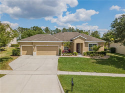 Photo of 3516 Tumbling River Drive, CLERMONT, FL 34711 (MLS # O5853107)