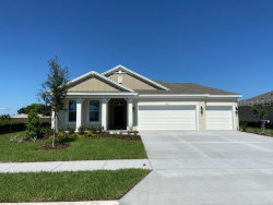 Photo of 460 Cavesson Street, APOPKA, FL 32712 (MLS # O5855431)