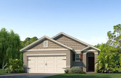 Photo of 133 Eagleview Loop, HAINES CITY, FL 33844 (MLS # O5865290)