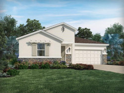 Photo of 10816 Whitland Grove Drive, RIVERVIEW, FL 33579 (MLS # O5865487)