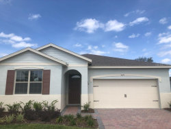 Photo of 3671 Beautyberry Way, CLERMONT, FL 34711 (MLS # O5867128)