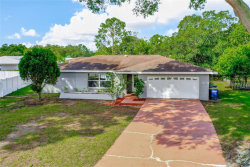 Photo of 2755 Poppyseed Court, CLEARWATER, FL 33761 (MLS # O5867919)