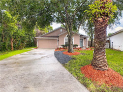 Photo of 4249 Pacifica Drive, ORLANDO, FL 32817 (MLS # O5875008)