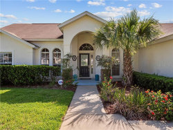 Photo of 2910 Anhinga Hill Street, CLERMONT, FL 34714 (MLS # O5882565)