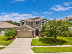 Photo of 10125 Hidden Dunes Lane, ORLANDO, FL 32832 (MLS # O5884929)