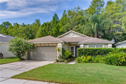 Photo of 10732 Spring Brook Lane, ORLANDO, FL 32825 (MLS # O5885083)