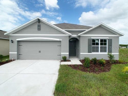 Photo of 543 Autumn Stream Drive, AUBURNDALE, FL 33823 (MLS # O5899611)