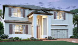 Photo of 13185 Blossom Valley Drive, CLERMONT, FL 34711 (MLS # O5901156)
