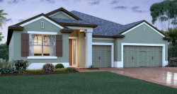 Photo of 13189 Blossom Valley Drive, CLERMONT, FL 34711 (MLS # O5901187)