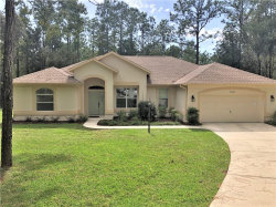 Photo of 9005 SW Sw 204th Circle Circle, DUNNELLON, FL 34431 (MLS # OM609047)