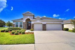 Photo of 10231 Holland Road, RIVERVIEW, FL 33578 (MLS # P4906881)