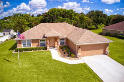 Photo of 1521 Blue Sky Boulevard, HAINES CITY, FL 33844 (MLS # P4908034)