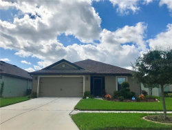 Photo of 1170 Woodlark Drive, HAINES CITY, FL 33844 (MLS # P4908122)