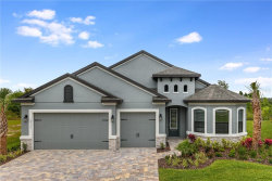 Photo of 33192 Chasewood Circle, WESLEY CHAPEL, FL 33545 (MLS # R4900775)