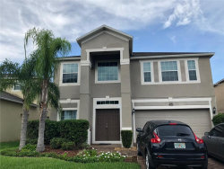 Photo of ORLANDO, FL 32832 (MLS # S5008473)