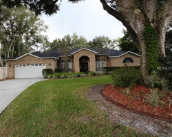 Photo of 1530 Shady Oak Drive, KISSIMMEE, FL 34744 (MLS # S5010498)